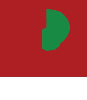 logo-dpn-footer-white-1